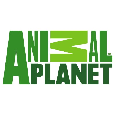 Animal Planet logo vector in .AI format