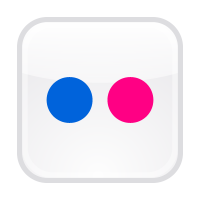 Flickr button vector
