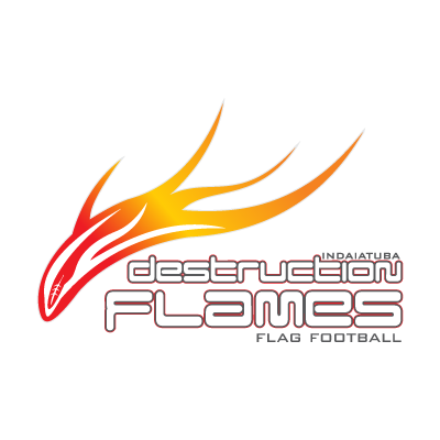 Destruction Flames logo