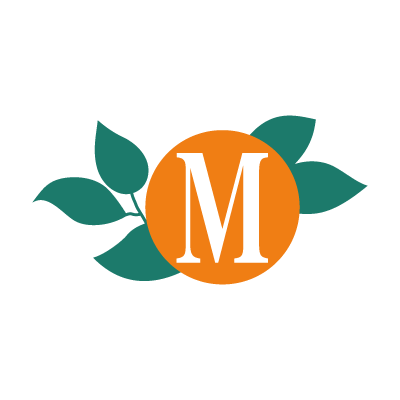 Meausure vector logo