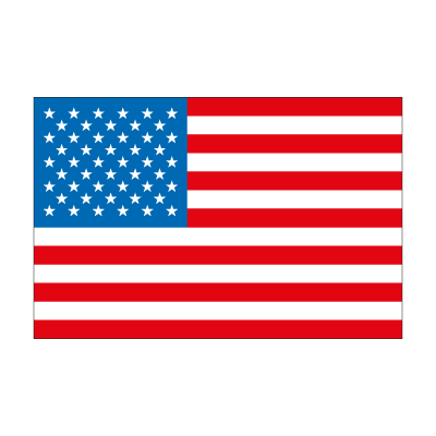 Flag of United State logo
