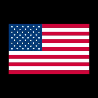 Flag of American logo