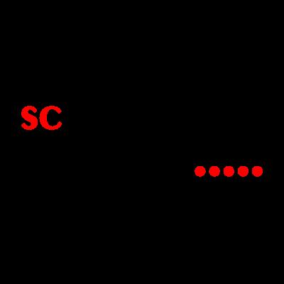 SC Waldgirmes vector logo