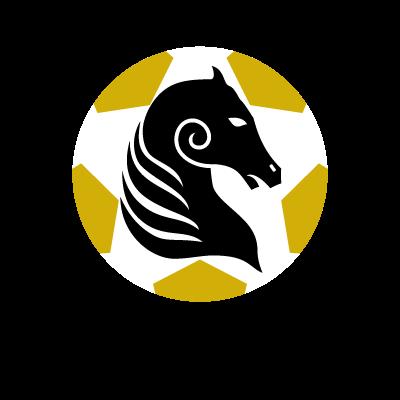 Kildare County FC vector logo