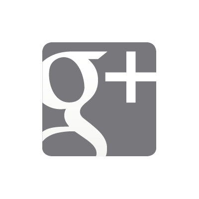 Google Plus grey vector logo