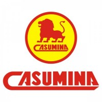Casumina vector logo free download