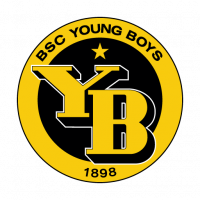 BSC Young Boys logo vector