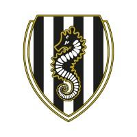 AC Cesena logo vector