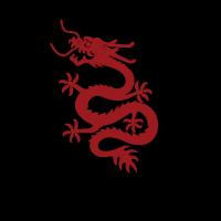 DragonAir logo vector