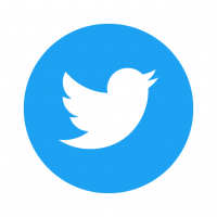 Twitter Social Icon Circle vector