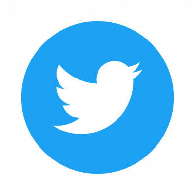 White Twitter logo of a bird in a blue circle