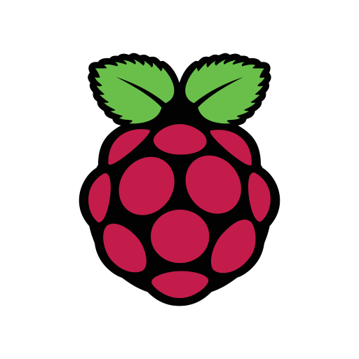 Raspberry Pi logo vector